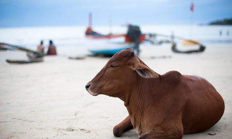Goa,Ινδία