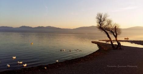 Λίμνη Τριχωνίδα