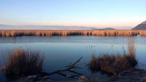 Λίμνη Παμβώτιδα