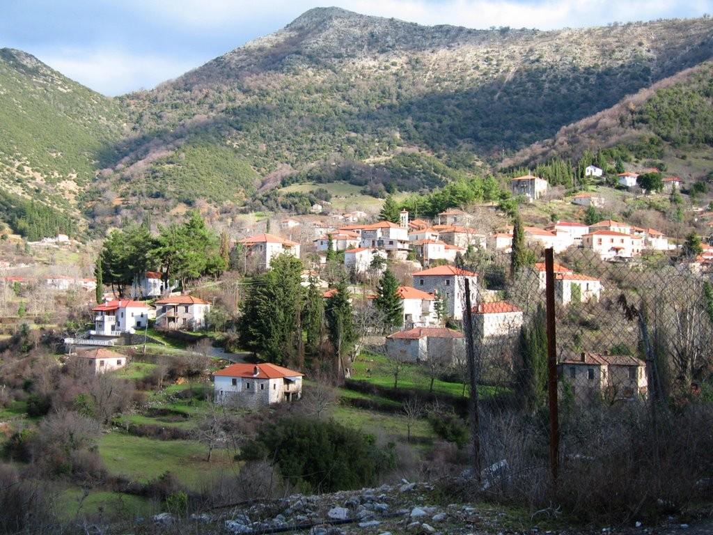 50d0a8fd62c Αροάνια: Σπάνια ομορφιά μέσα στη φύση — Μαρία Ηλιάκη